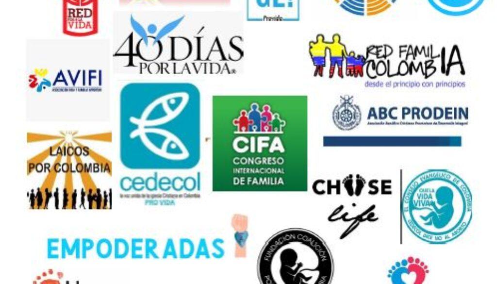 organizaciones PROVIDA